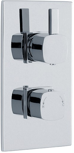Twin Concealed Thermostatic Shower Valve (Chrome). additional image